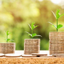 Comment être rassurer de la rentabilité d'un investissement?